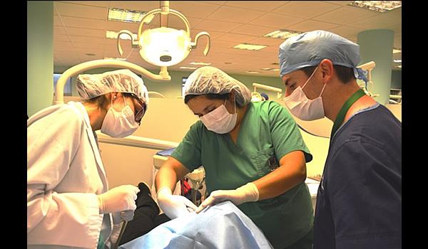 Cirugía 4° año